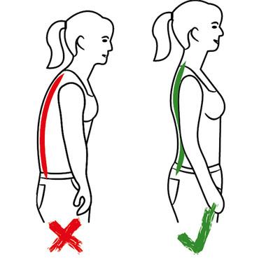 Bauch- und Rückenstützgürtel – Bild 2