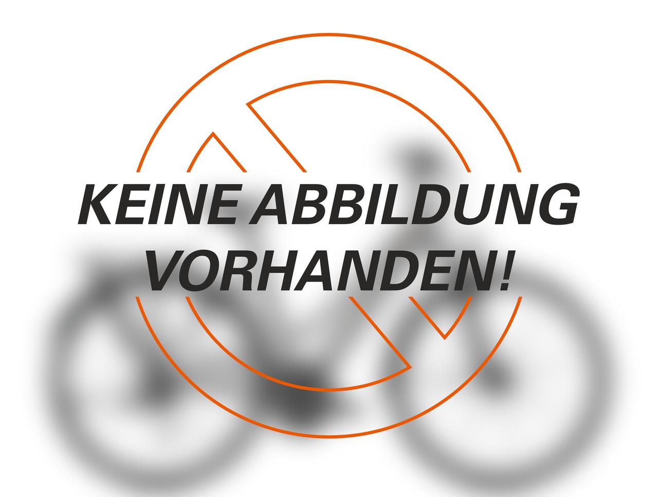 Kreidler Vitality Eco6 Edition Simano XT 10 Gang Bosch Performance CX 500W 36V 13,8Ah Freilauf – Bild 2