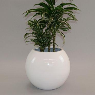 Pflanzschale Fiberglas Ball D62xH48cm hochglanz weiß