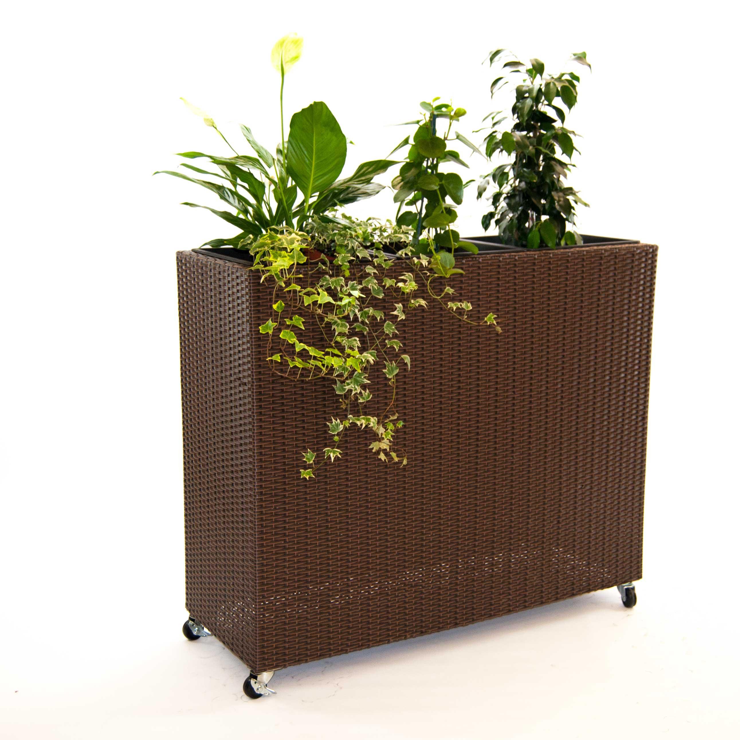 pflanzk bel pflanztrog polyrattan als raumteiler mit. Black Bedroom Furniture Sets. Home Design Ideas