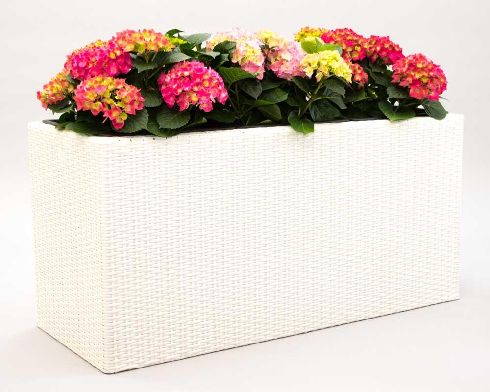 Eleganteinrichten Pflanzkasten Polyrattan 82x30x29cm weiß