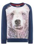 name it mini Jungen Sweatshirt, Pullover Firs mit Bär-Print in dress blues
