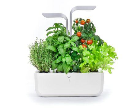 VÉRITABLE hydroponischer Kräutergarten Smart Edition inkl. 4 Kräuter Samenkit Indoor garden Garten  – Bild 2