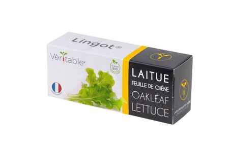 1 Stk. Véritable® Lingot® Eichblattsalat Nachfükllpack Kräuter Kräutergarten Samen Set