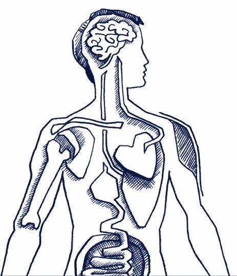 Unsere Produkte basieren auf den neuesten wissenschaftlichen Erkenntnissen zur Gehirn-Darm-Achse.