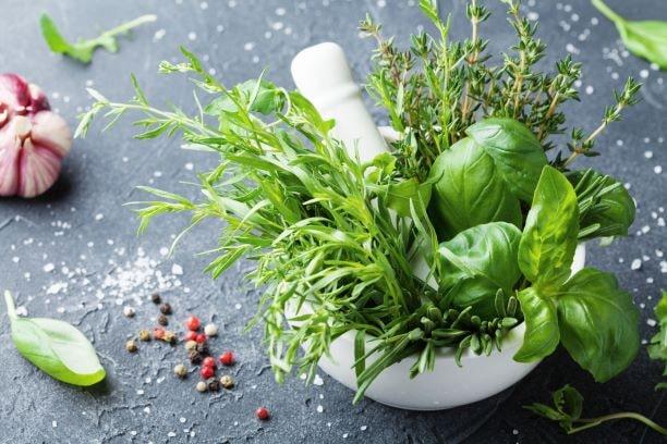 Küchenkräuter helfen Morbus Parkinson Patienten etwaigen Geschmacksveränderungen und Appetitlosigkeit etwas entgegenzusetzen.