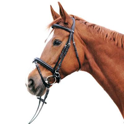 Euroriding Trense Euro Club, schwed. RH, braun, Pony