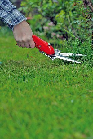 Berger 2100 Rasenkantenschere verchromt 310mm – Bild 5