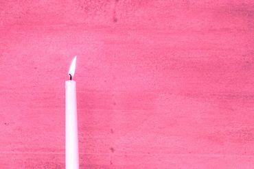 HAGA Kalkfarbe auf Sumpfkalkbasis für Innen & Außen, weiss natur, 5 kg – Bild 9