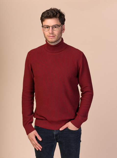 DILIP Men's Turtleneck Jumper