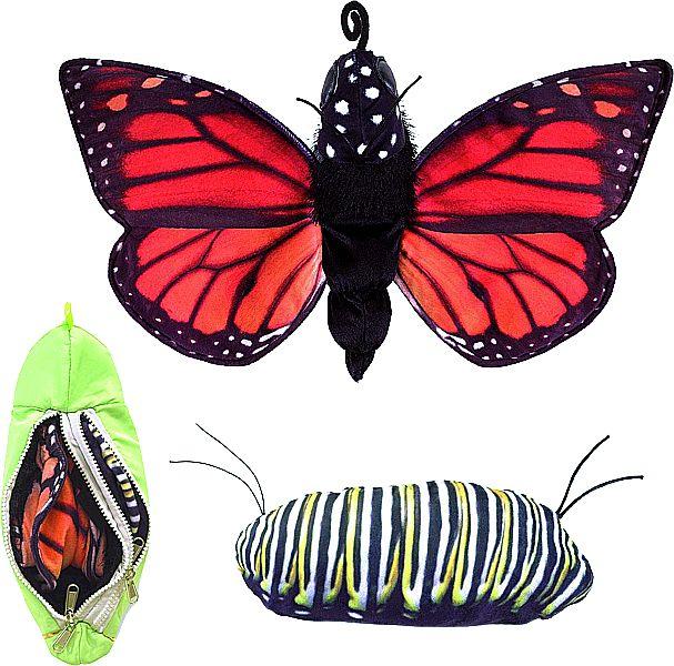 Folkmanis Schmetterling Entwicklung