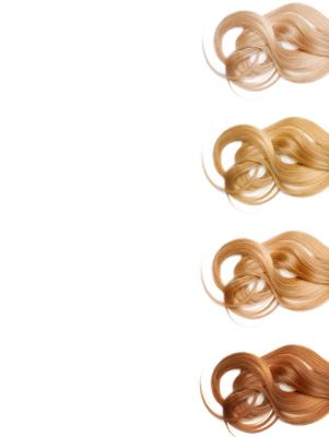 Mega-Einkaufsparadies Haarfarbe und Tönung