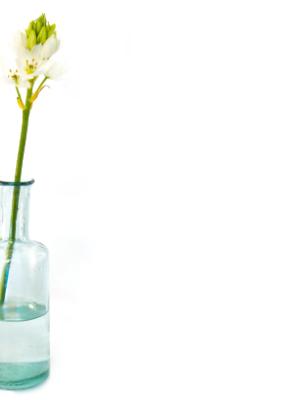 Mega-Einkaufsparadies Vasen und Kerzengläser