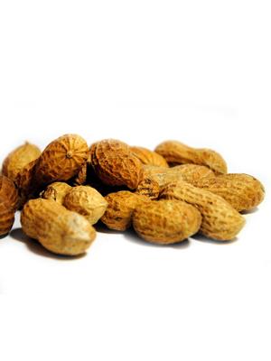 Mega-Einkaufsparadies Nüsse