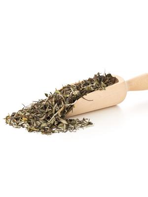 Mega-Einkaufsparadies Tee