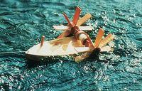 Forelle Schiffsbausatz (schwimmt gegen die Strömung) 001