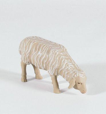 Krippenfigur Schaf fressend Heimat-Krippe 20 cm