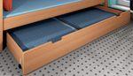 Bettschubkasten auf Rollen Dahlhaus Buche 2 Farben- 2 Größen