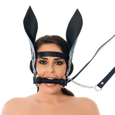 BDSM Pferdekandare