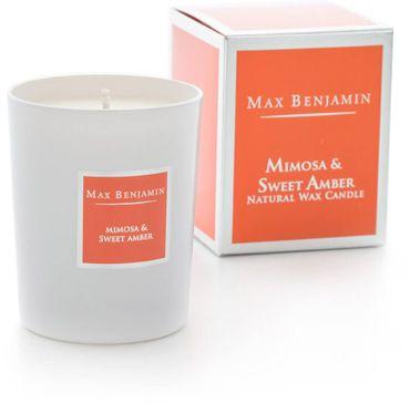 Max Benjamin Mimosa & Sweet Amber Kerze