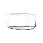 Nude Vase Blade Wide Clear 001