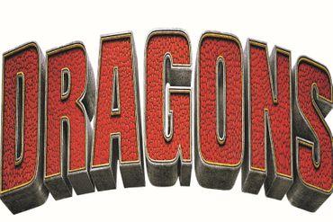 Dragons Badetuch Strandtuch Velourstuch 75 x 150 cm grün Baumwolle Kinder – Bild 2
