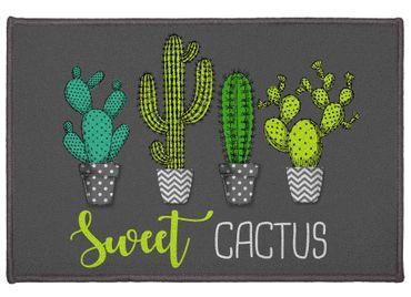 Fußmatte Türmatte 40x60 cm Sweet Cactus grau Schmutzfangmatte Fußabtreter Innen – Bild 1