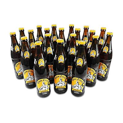 Odin - Trunk (20 Flaschen Honigbier à 0,5 l / 5,4 % vol.)