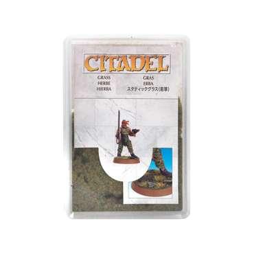 Citadel Gras