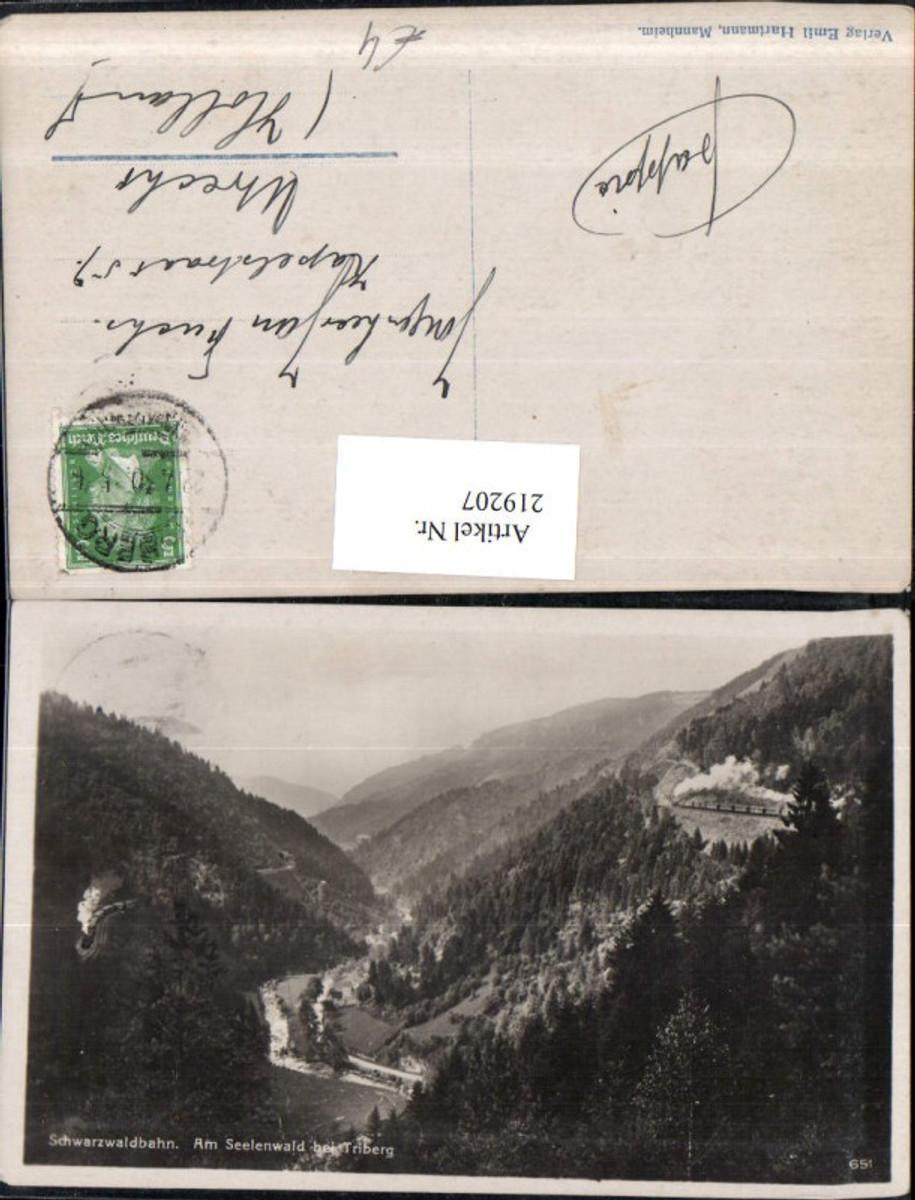 219207,Schwarzwaldbahn Am Seelenwald b. Triberg günstig online kaufen