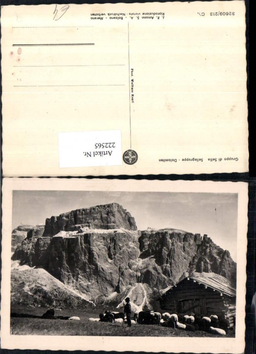 222565,Trentino Sellagruppe Dolomiten Bergkulisse Schäfer Hirte Schafe b. Wolkenstein günstig online kaufen