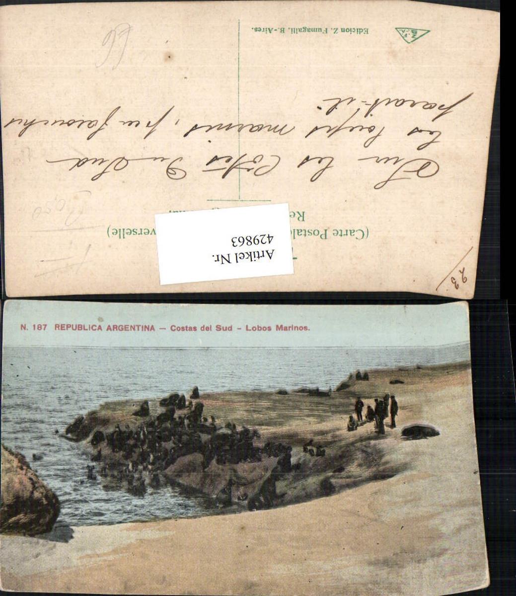 429863,Argentina Costas del Sud Lobos Marinos Küste günstig online kaufen