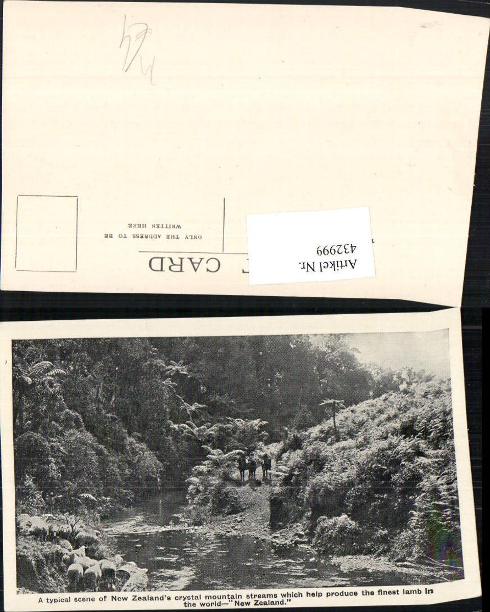 432999,New Zealand Neuseeland Crystal mountain streams Fluss Schafe günstig online kaufen