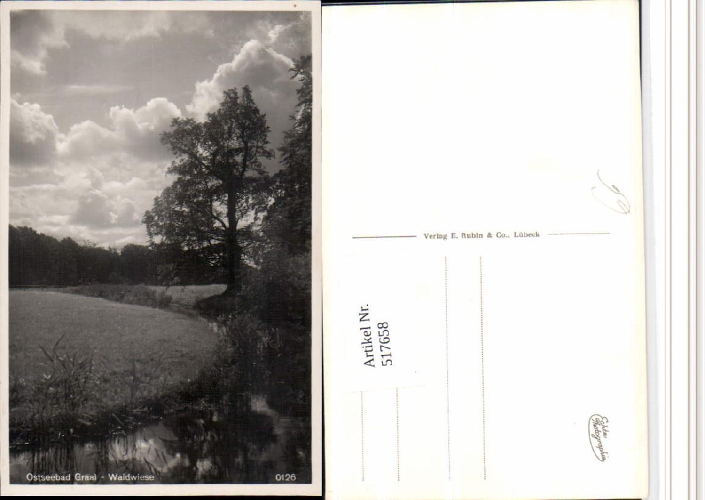 517658,Ostseebad Graal-Müritz Waldwiese Landschaft günstig online kaufen