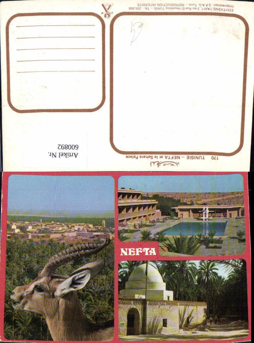 600892,Mehrbild Ak Nefta et le Sahara Palace Tunisia günstig online kaufen
