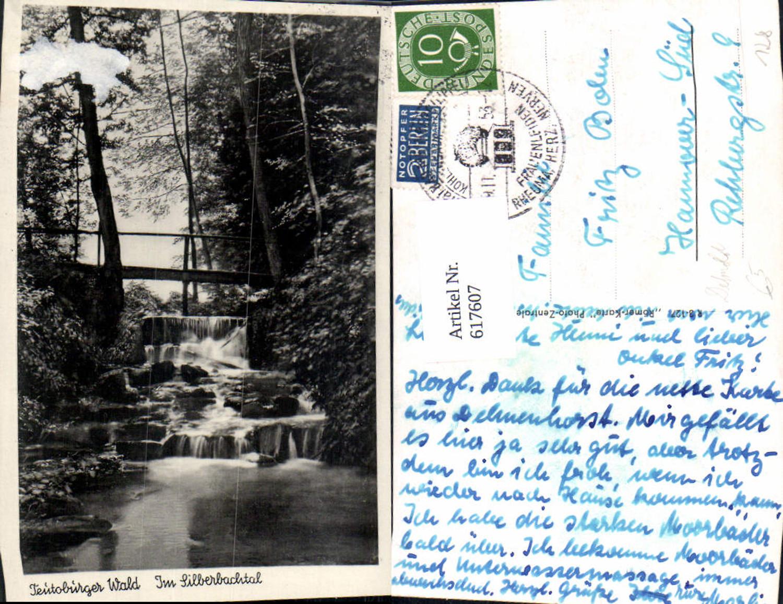 617607,Teutoburger Wald Silberbachtal b. Horn-Bad Meinberg günstig online kaufen