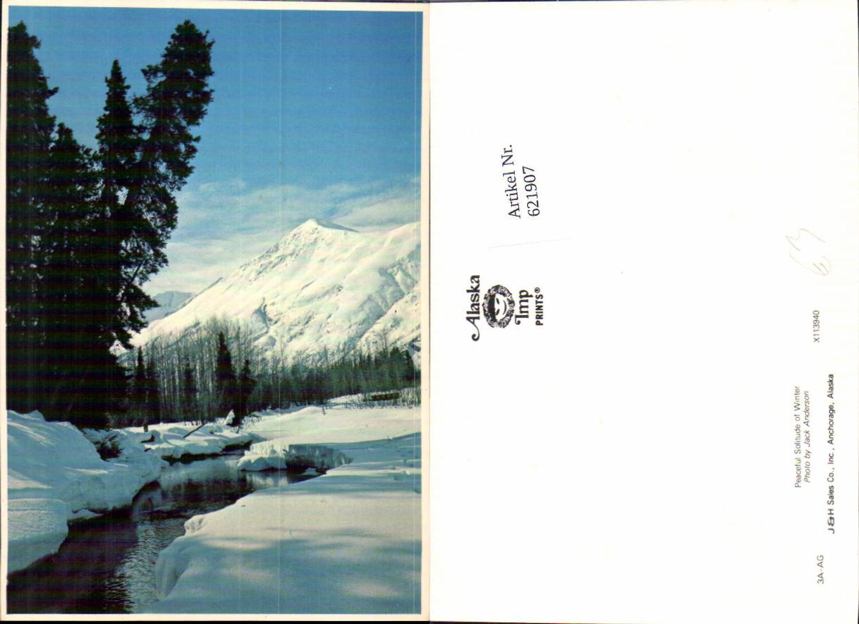 621907,Peaceful Solitude of Winter Landschaft Alaska günstig online kaufen