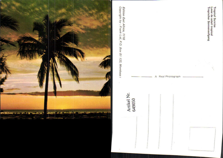 649050,Tropical Sunrise East Africa Mombasa Kenya Kenia Palme günstig online kaufen