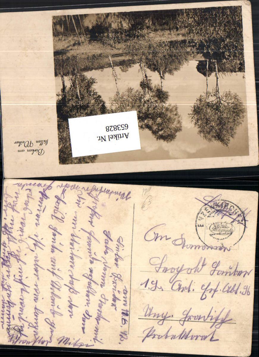 653828,WK 2 Feldpost Enzenkirchen n. Ungarisch Hradisch Birken Bäume günstig online kaufen