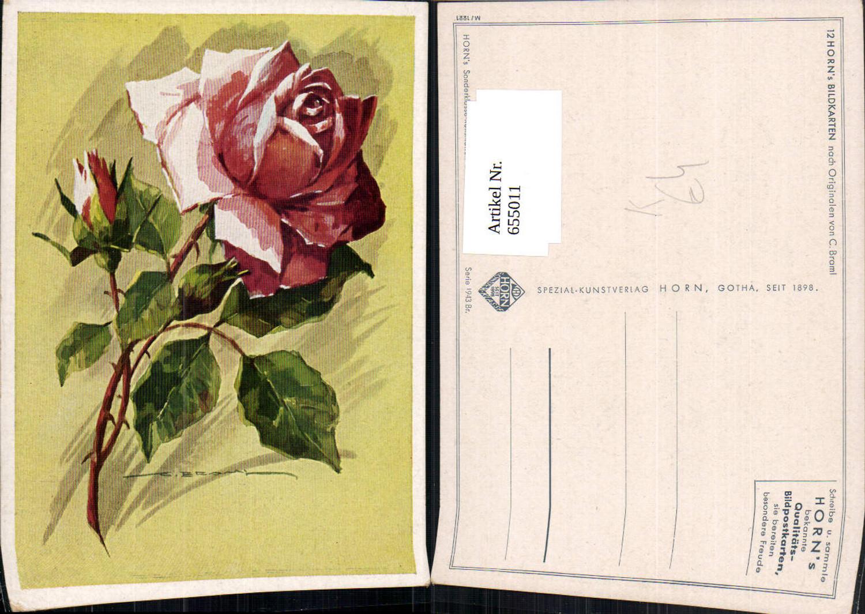 655011,Künstler Ak C. Braml Rosa Rosen Knospen Blüten Blumen Vegetation günstig online kaufen