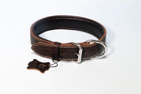Hundehalsband aus Leder mit Neopren – Bild 4