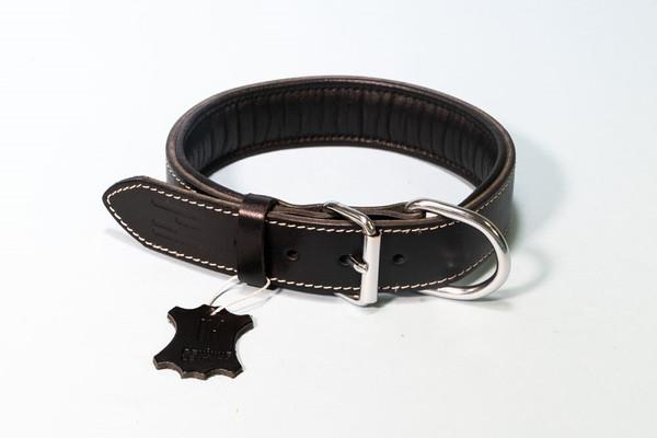 Hundehalsband aus Leder mit Neopren – Bild 3