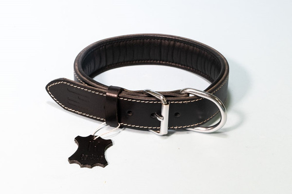 Hundehalsband 'Classic' aus Leder mit Neopren – Bild 3