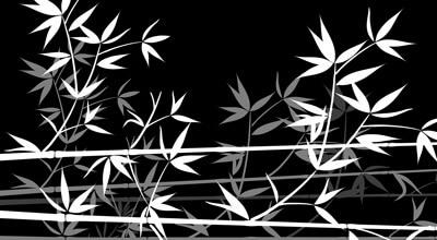 Motiv Bambusblätter