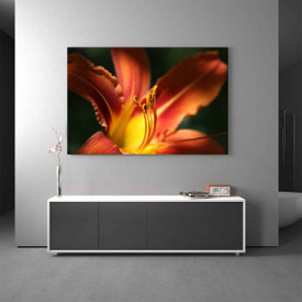 Glasbild Lilie Orange