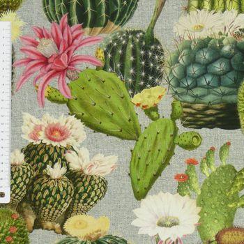 Baumwollstoff Stoff Dekostoff Digitaldruck Kaktus Kakteen grau grün – Bild 2