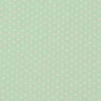 Baumwollstoff Mini Sterne mint weiß 001