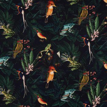 Dekostoff Gardinenstoff Dschungel Vögel Frösche schwarz grün bunt 1,40m Breite – Bild 1