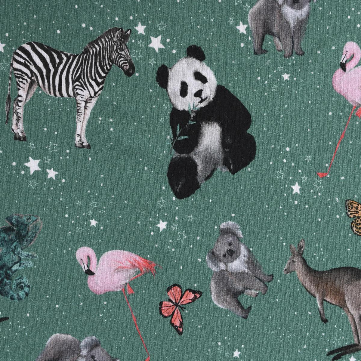 Sweatstoff Bio GOTS Digitaldruck Tiere Panda Koala Sterne grün bunt 1,45m Breite