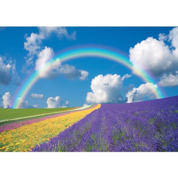 Fototapete no. 273   Vlies   Himmel Tapete Regenbogen Blumen bunt Motiv 0273